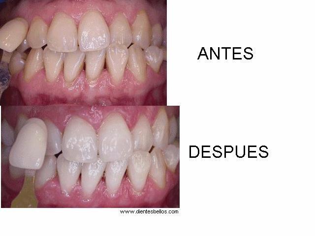 Dr. Alfredo Morales Viramontes - gallery photo
