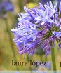 Laura López López