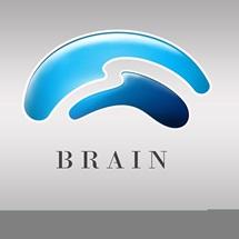 BRAIN INSTITUTO - Centro de dor, neurociencias e qualidade de vida.