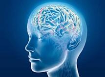 Centro de Avaliação Neuropsicologica e Reabilitação Cognitiva