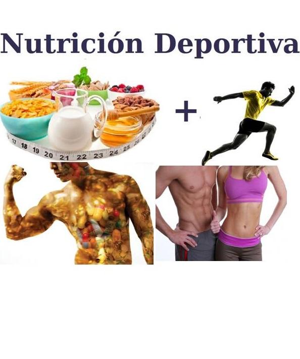 Pamela Vicuña Puebla - Nutricionista Temuco