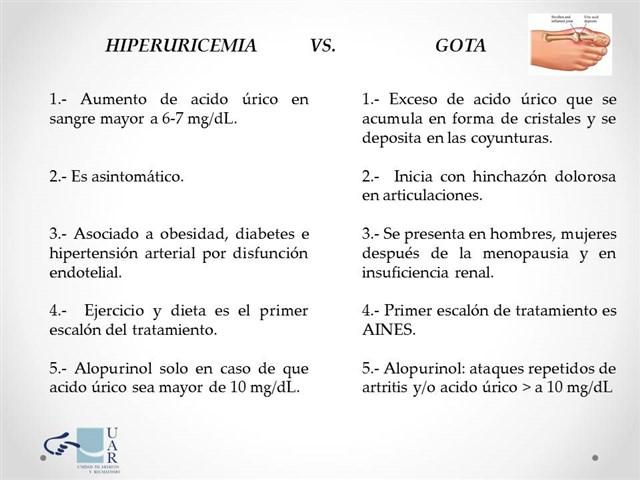 dietas para colesterol y acido urico altos canonigo y acido urico valores de acido urico en orina parcial