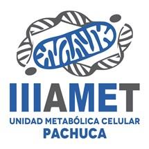 Instituto Internacional de Investigación Aplicada Al Metabolismo | Unidad Metabólica Celular Pachuca