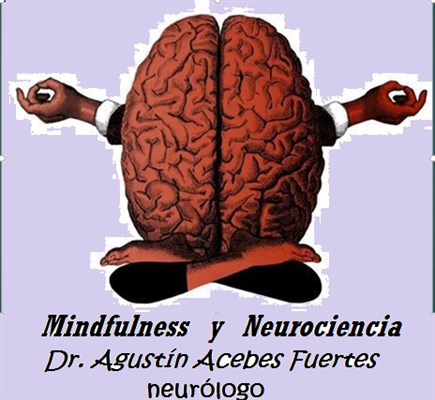 Dr. Agustin Acebes Fuertes - gallery photo