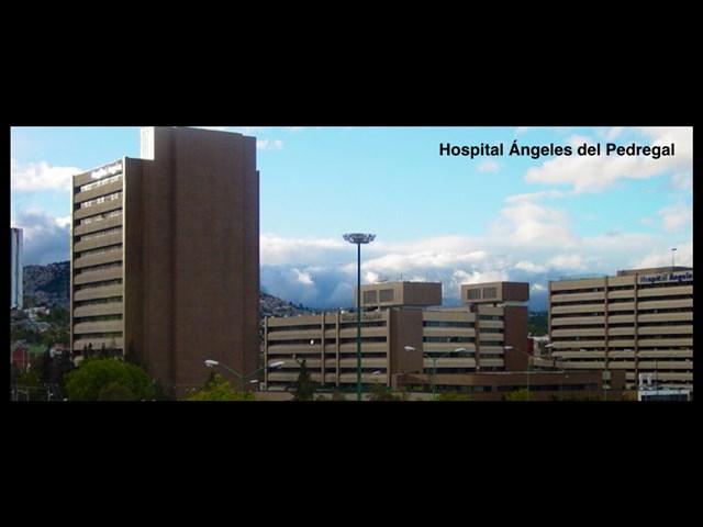 Dr. Agustín Dorantes Argandar - gallery photo