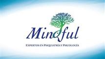 Mindful: Especialistas En Salud Emocional