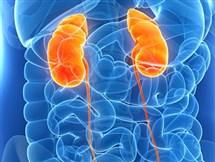 Centro Enfermedades Renales y Digestivas