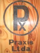 Centro Praxis Ltda.