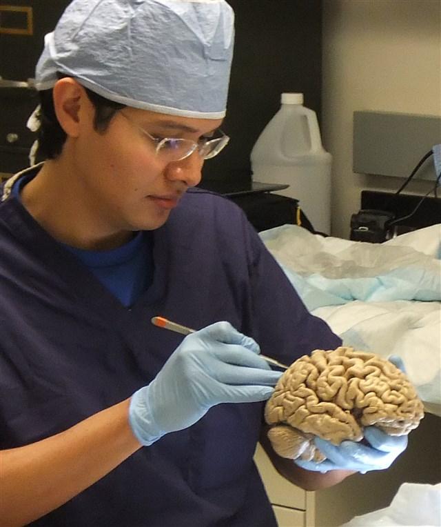 Dr. Javier Martínez Jaramillo - profile image