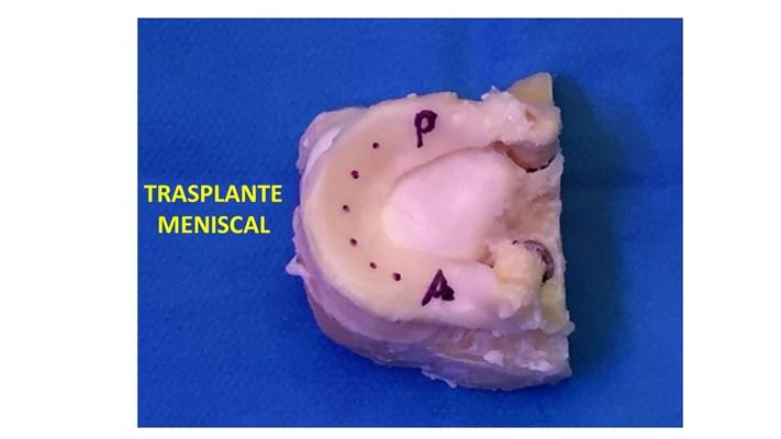 Dr. Marcelo Casaccia - gallery photo